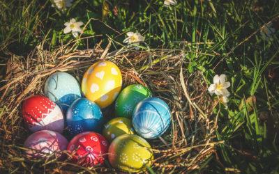 Anteprima Pasqua! Partenze di sabato 11 da Roma, da € 379!