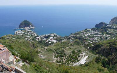 Tour Ischia Relax